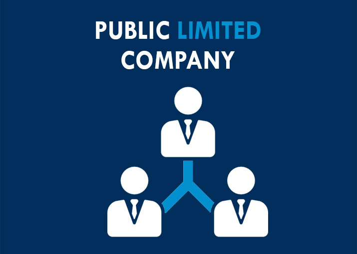 public limited company river intellect solutions